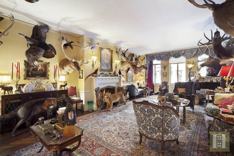 Taxidermy Apartment 1