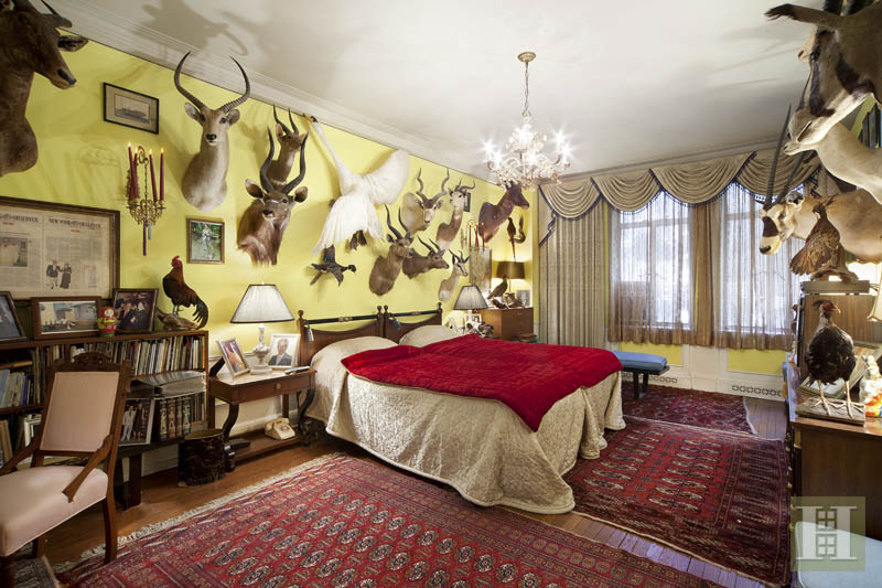 Taxidermy Apartment 5