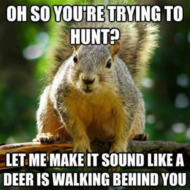 Hunting Memes It S Almost Time The Hunting Game